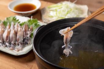 【数量限定】氷見産ほたるいか しゃぶしゃぶセット(ぽん酢+出汁昆布付き)